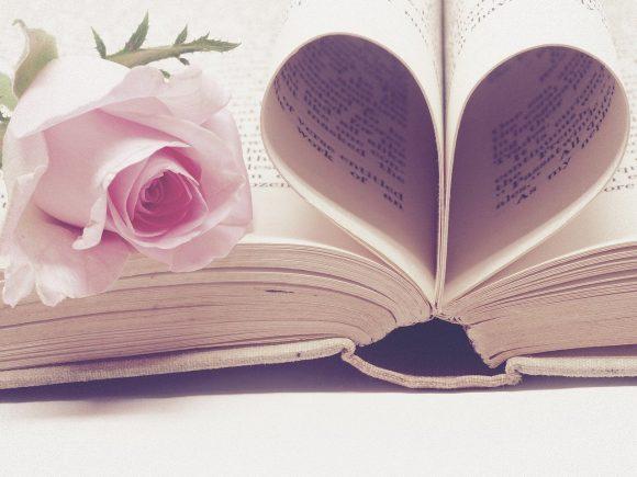 literature, book bindings, page